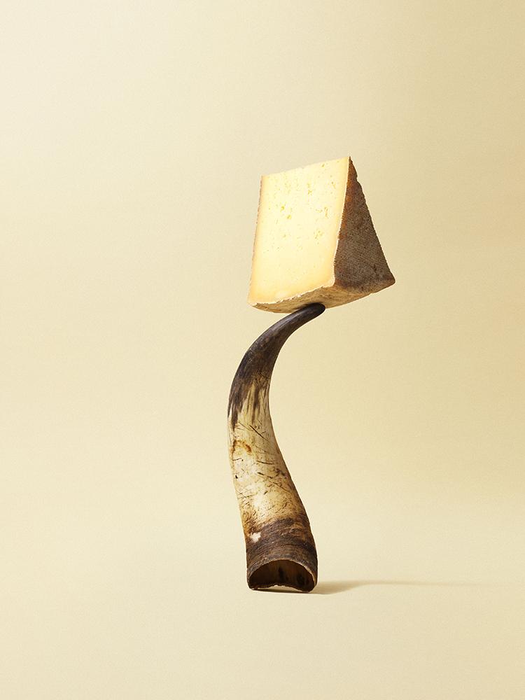 foodstyling conceptontwikkeling art direction ztrdg elleeten remeker kaas jersey koe hoorn